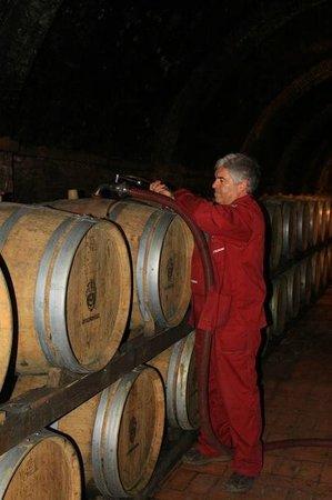Weingut Avignonesi: New wine going into barrels
