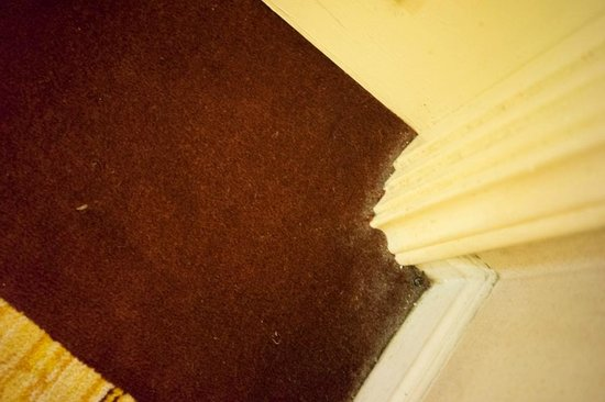 Riverside Majestic Hotel: dusty carpet