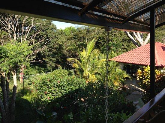 Casa Buenavista: view from our porch