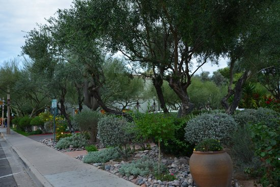 Old Town Scottsdale: Along the sidewalk