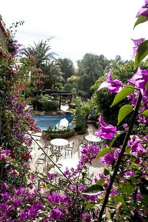 Hotel Swiss Moraira: Vistas al jardín desde la 207