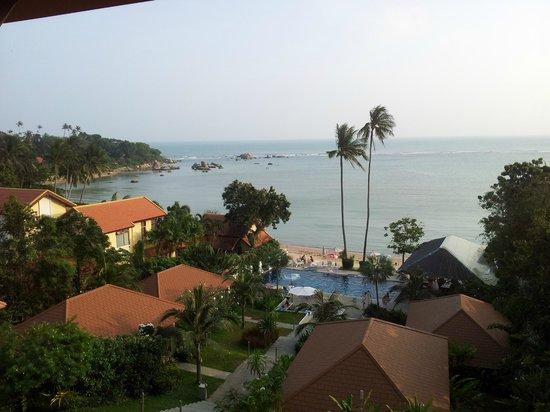 Palm Coco Mantra : la vista....che non dimenticheremo