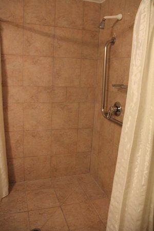 Silver Fern Rotorua - Accommodation and Spa: shower