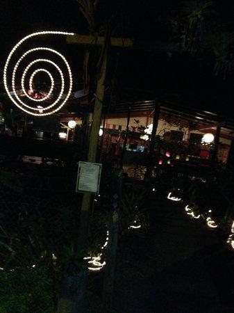 Stashus con Fusion: Lights
