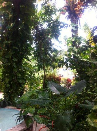 Hotel Hul-Ku: Foyer