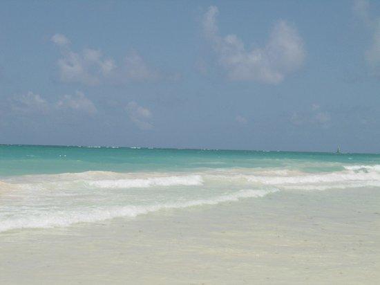 Paradisus Punta Cana: Praia de Bávaro