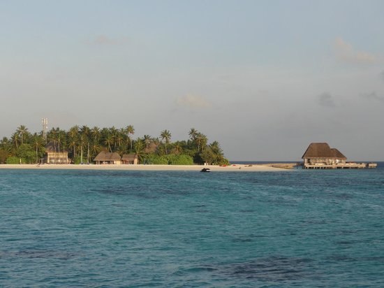 W Maldives : View of island from room