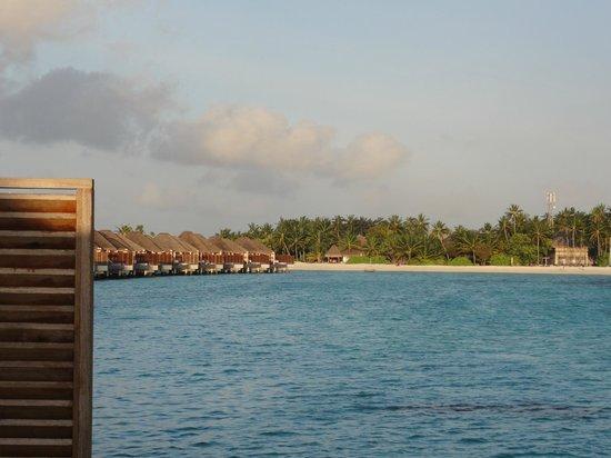 W Maldives : View of island