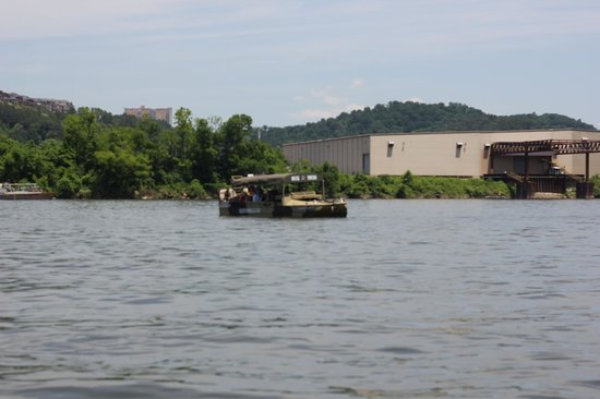 Chattanooga Ducks: Chattanooga Duck boat