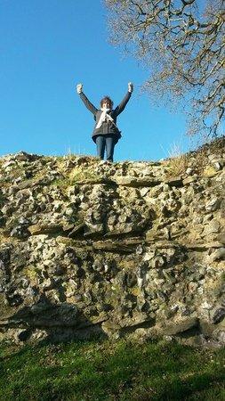 Silchester Roman City Walls and Amphitheatre: Roman Walls