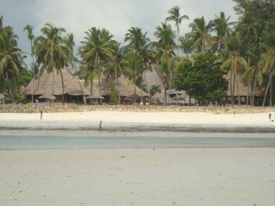 Diani Beach: dalla barriera corallina