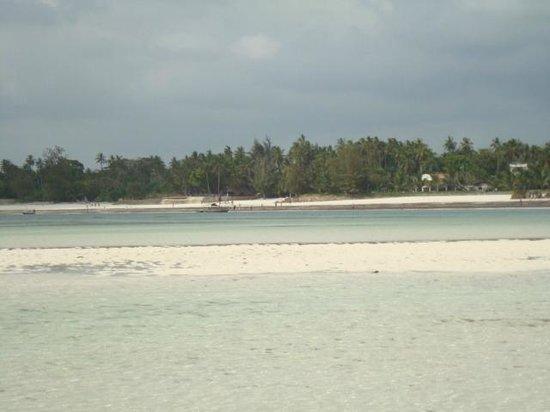 Diani Beach: Diani/Galu beach