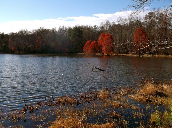 The Abbey of Gethsemani: One of the Many Lakes