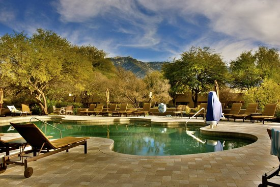 Miraval Arizona Resort & Spa : One of the pools at the spa.