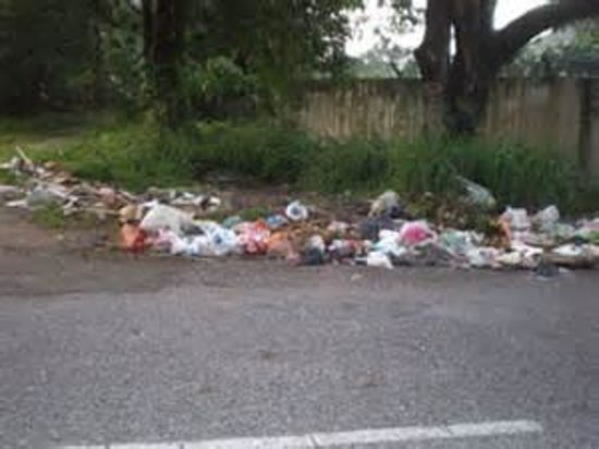 Radisson Blu Resort Split: rubbish everywhere
