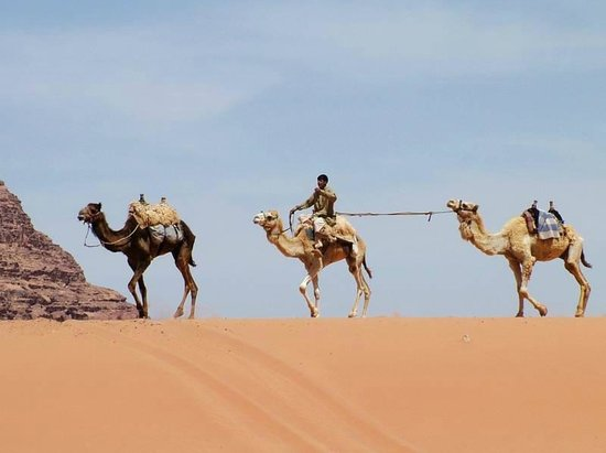 Classic Wadi Rum Tours - Private Day Tours: CWRT