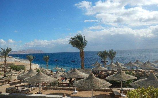 Hilton Sharks Bay Resort : вид из бара над пляжем