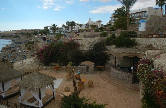 Hilton Sharks Bay Resort : бар на пляже