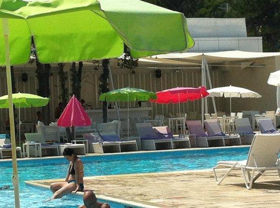 Hotel Melodia : Pool area