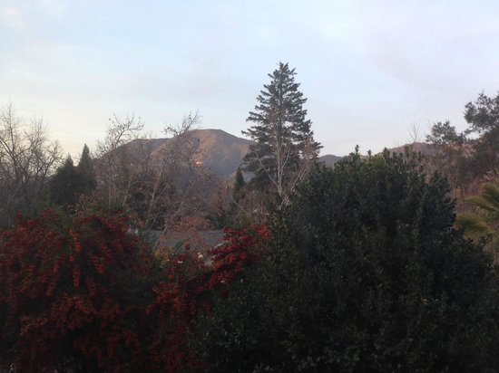 Calistoga Inn: view of the mountains from Room 4