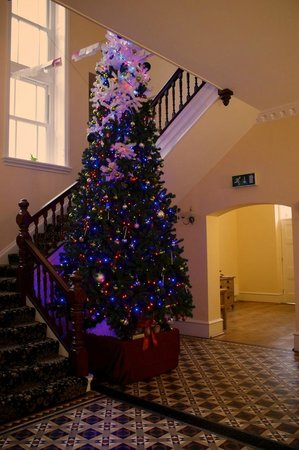 Wildercombe House : The Christmas Tree in the Hallway