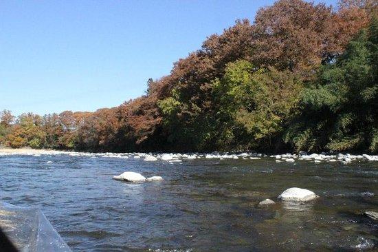 Nagatoro River White Water Rafting : 川下りの風景
