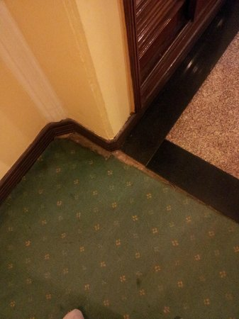 The Piccadily : See the flooring in rooms. The carpets are torn and have pest inside.