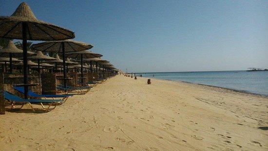 Steigenberger Coraya Beach : Stunning beach