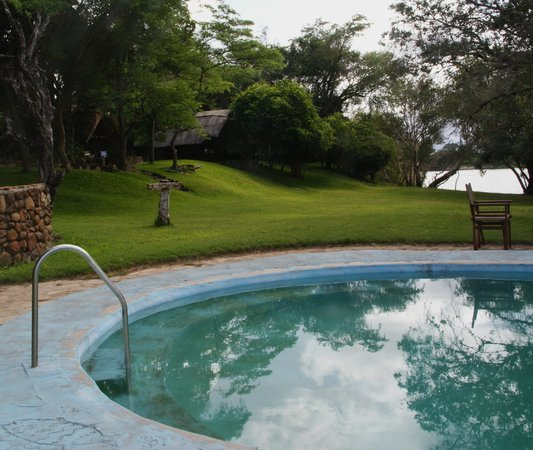 Kubu Cabins: Swimming pool and lush green lawns