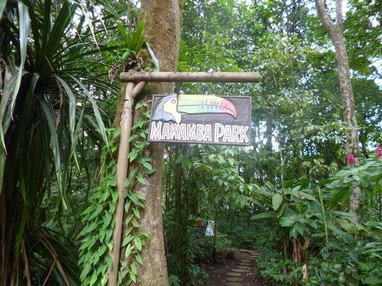 Mawamba Lodge: park
