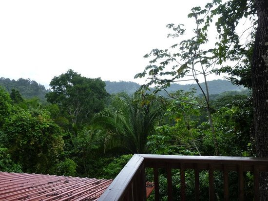 Ian Anderson's Caves Branch Jungle Lodge: View from balcony