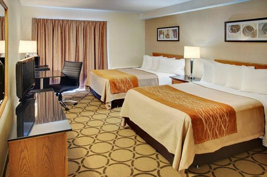 Comfort Inn - Amherst : Spacious guest rooms!