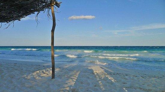 Casa de las Olas: evening Olas beach