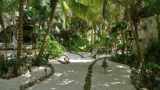 Casa de las Olas: Olas lovely entry path