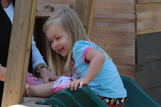 Brookgreen Gardens: Slides, A  Castle, A fort, Swings