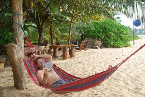 Mangrove Beach Cabanas & Chalets : beach bar