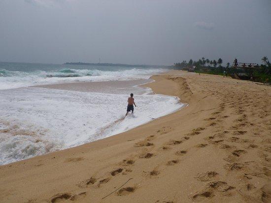 Mangrove Beach Cabanas & Chalets : where is every body !!