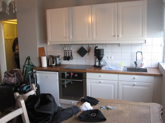 Einholt Apartments: Kitchen area - tap water is drinkable but hot water has a sulfuric smell!