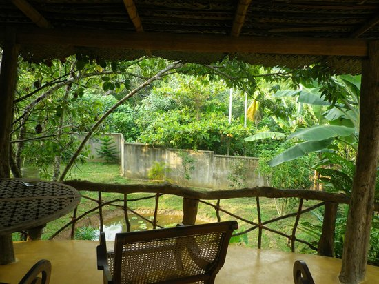The Spice House, Mirissa: view from the mud hut