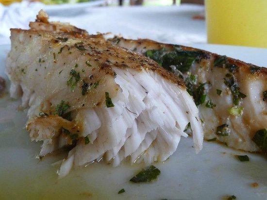 Baked chicken breast pechuga de pollo al horno picture - Pechugas de pollo al horno ...