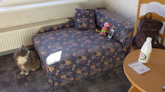 Talsi Hotel: Дополнительный диванчик. Есть не во всех номерах. Кот в гости зашёл:)