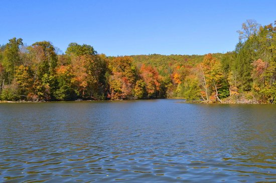 Bays Mountain Park & Planetarium : Lake