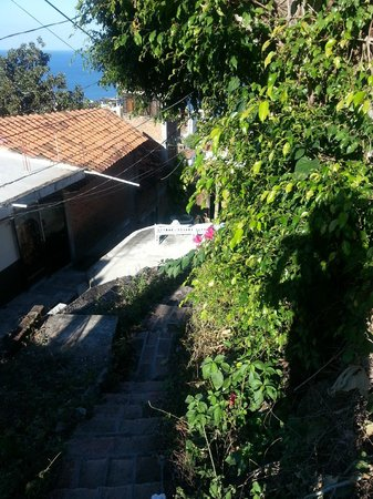 The 3 Amigos Guest House : View on path down hill