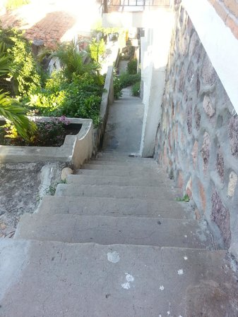 The 3 Amigos Guest House : Stairway from bench area