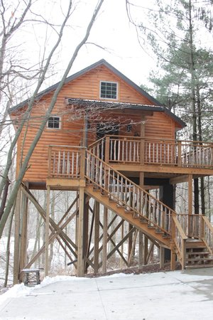 Coblentz Country Cabins-Amish Country Lodging : Wild Cherry Tree House