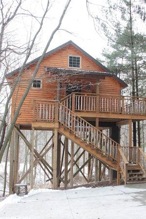 Coblentz Country Cabins: Wild Cherry Tree House