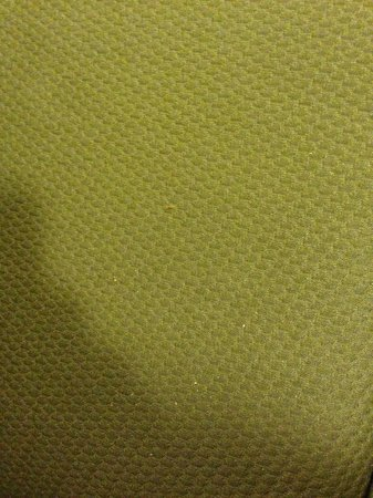 Holiday Inn Stillwater - University West: Crumbs on couch from pervious guest