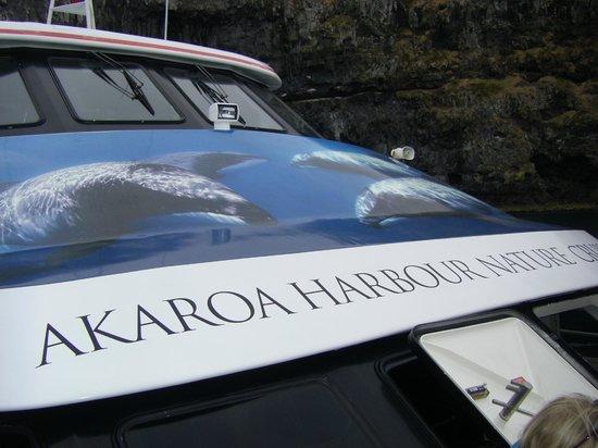 Black Cat Cruises: the catamaran  we took