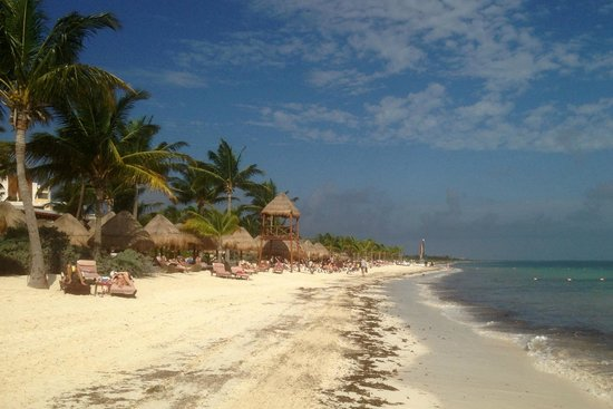 Excellence Playa Mujeres : Beach