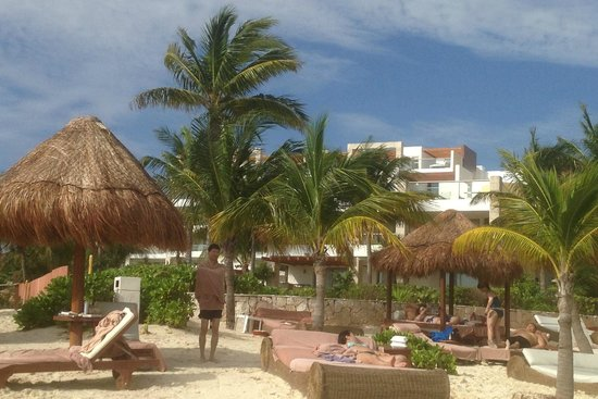 Excellence Playa Mujeres : Resort from the beach
